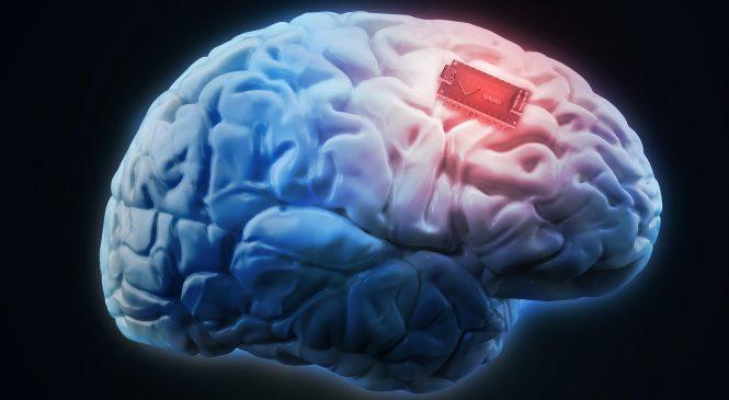 Empresário quer colocar chip em cérebro de humanos