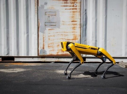 Coronavírus: Cão-robô faz patrulha na quarentena em Singapura