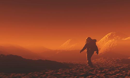 Elon Musk precisa de 300 pessoas 'prontas para morrer' por dia em Marte